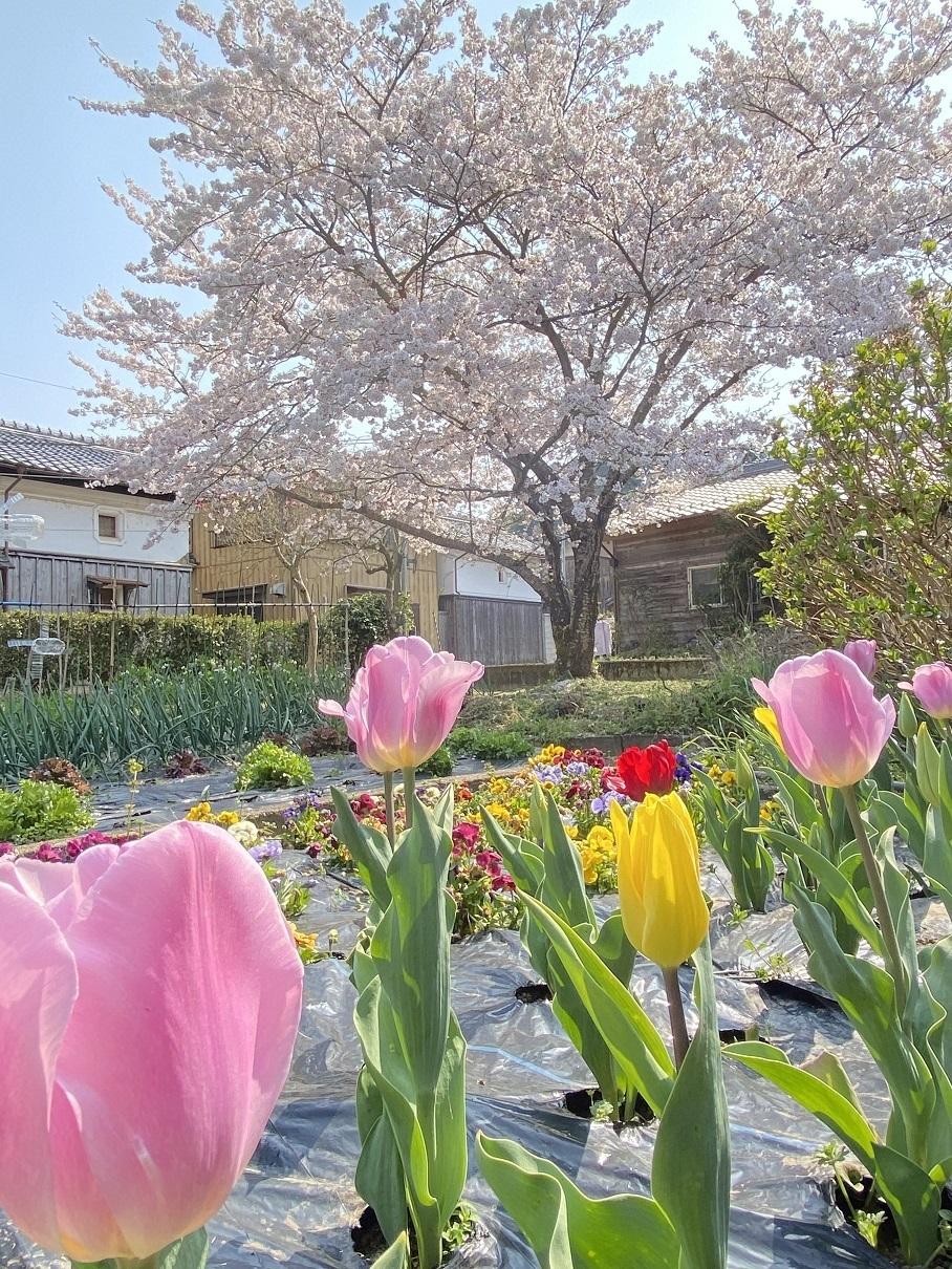 200408桑山邸.JPG